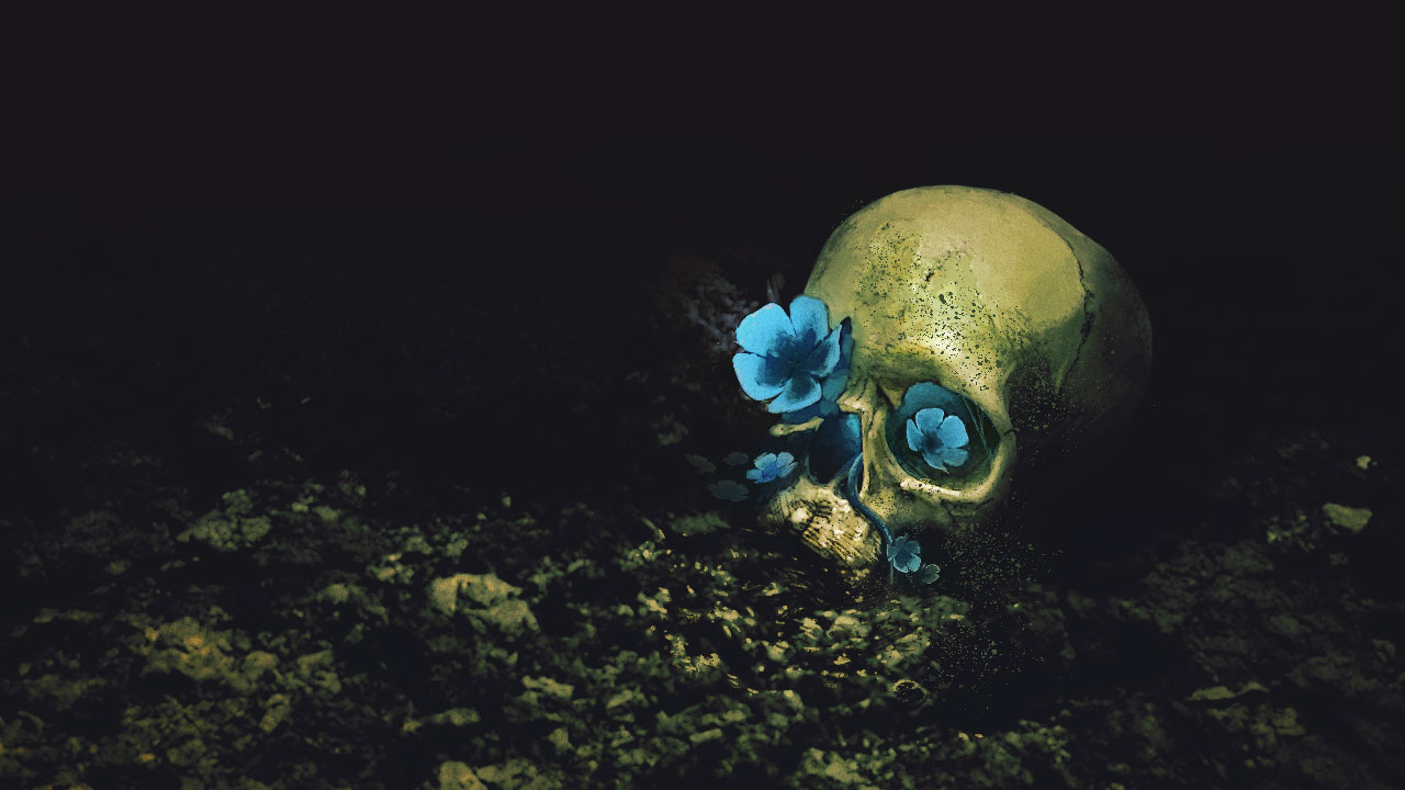 Barotrauma flower and skull illustration